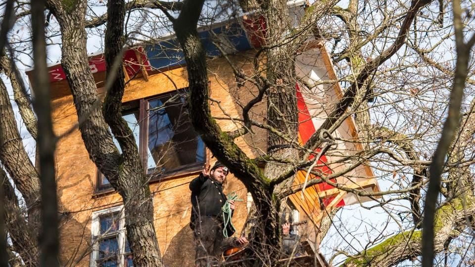 Picture for Dad leaves scathing letter to anonymous 'Karen' who forced him to tear down treehouse built for kids