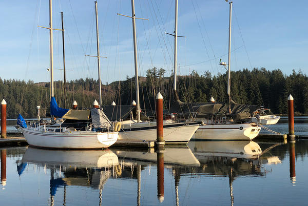 Picture for Wine and Chowder Event Moved; 8 More Cases of COVID-19 for Florence; OHA Weekly COVID Report; Daily COVID Numbers; Vax Clinic