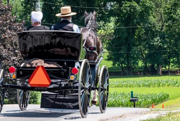 Picture for The Real Reason The Amish Won't Serve In The Military