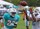 Picture for Amid rash of WR injuries, one Dolphins vet has been an explosive playmaker