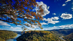 Cover for 4 Places to See on a West Virginia Road Trip