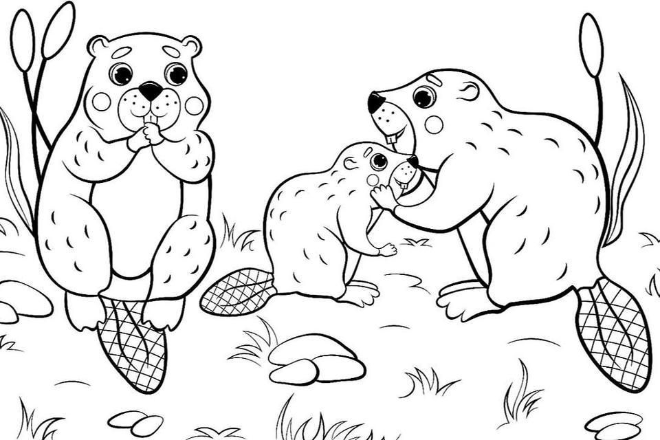 - Animal Families Coloring Pages: Free & Fun Printable Coloring Pages Of  Animal Families For Everyone News Break