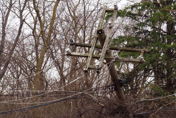 Picture for DTE employee killed restoring power to Brighton