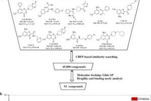 Picture for Discovery of novel DprE1 inhibitors via computational bioactivity fingerprints and structure-based virtual screening