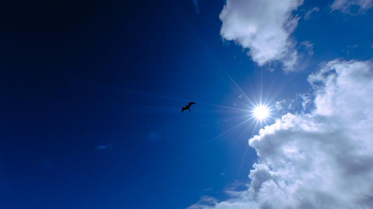 Picture for Thursday sun alert in Pacifica — 3 ways to take advantage of it