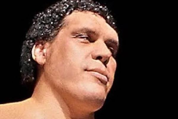 Picture for The One Reason Andre The Giant Couldn't Stand Randy Savage