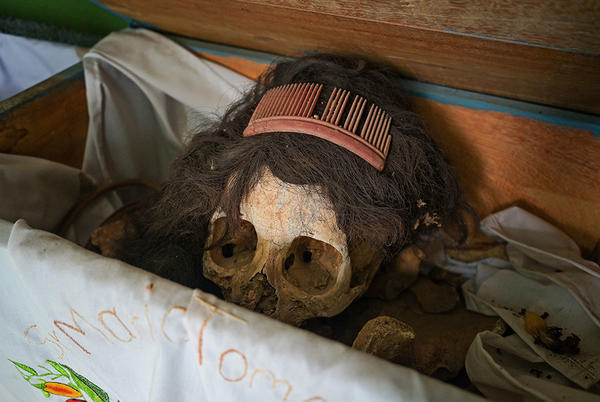 Picture for Cleaning bones: Maya community honors the dead