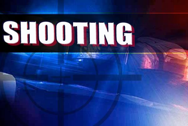 Picture for Shooting near City Park Saturday morning