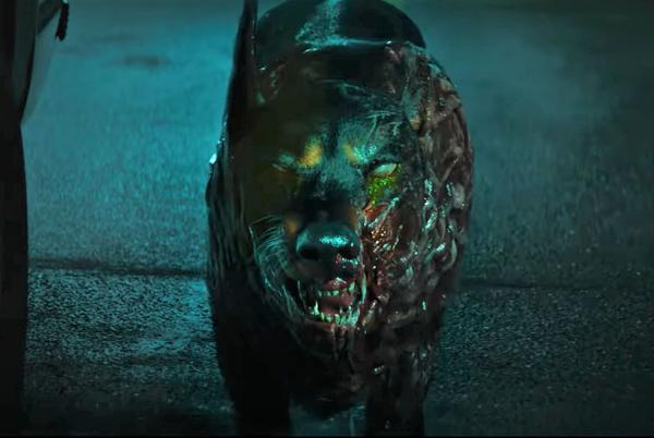 Picture for 'Resident Evil: Welcome to Raccoon City' First Trailer Shows Animals Turned Deadly Zombies