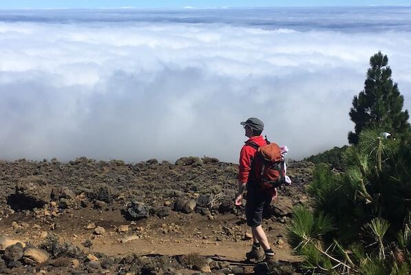 Picture for Tourists 'escape La Palma volcano destruction'