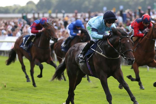 Picture for Vertem Futurity Trophy: Royal Patronage team keeping faith after bad luck in running at Doncaster Group One