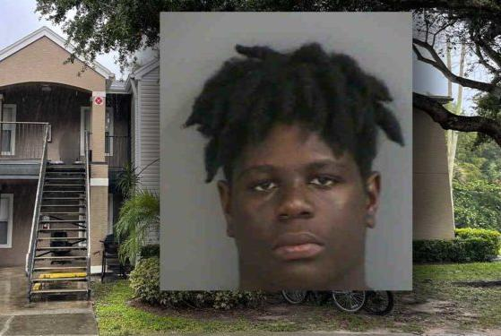 Picture for Teen arrested for stabbing at East Naples apartment complex