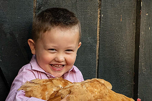 Picture for Family Mourning Devastating Loss of 4-Year-Old Turin Boy in Tragic Farming Accident