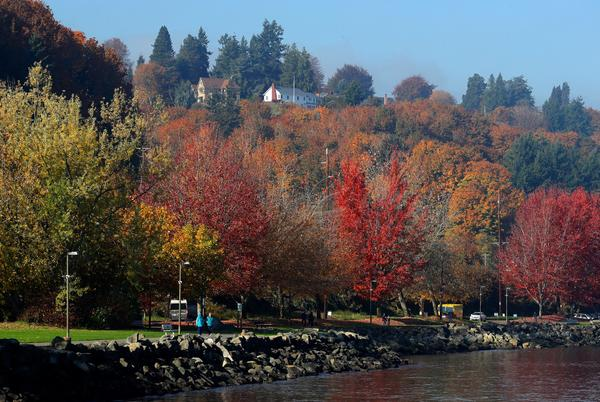 Picture for Farewell flip-flops, hello pumpkin spice: The autumnal equinox is Wednesday