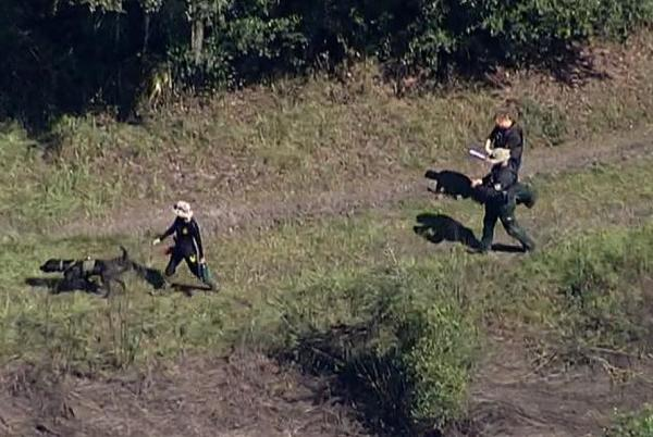 Picture for Strong probability that suspected remains found in a Florida park are Brian Laundrie's, family attorney says