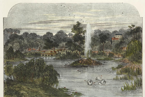 Picture for View in the Melbourne Botanical Gardens.