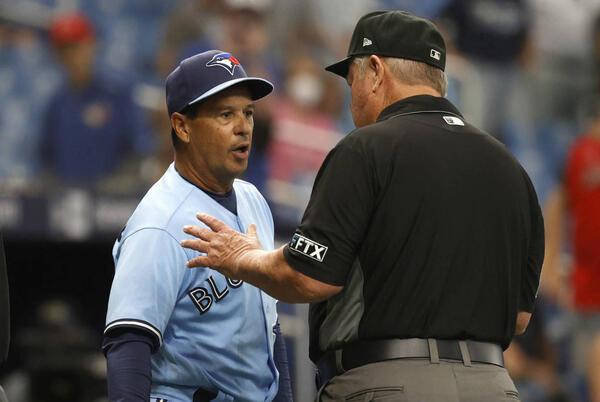 Picture for MLB suspends Blue Jays' Ryan Borucki, Charlie Montoyo