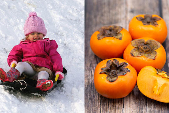 Picture for This Fruit Predicted Middle Tennessee's Winter: Here's What It Says