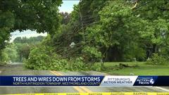 Cover for Trees, wires down after storms move through Westmoreland County