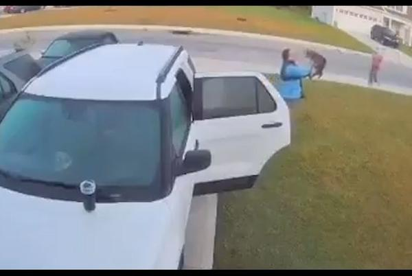 Picture for Video: Couple attacked by rabid bobcat in their driveway