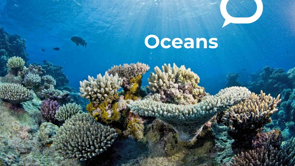 Picture for 5 ways climate-driven ocean change can threaten human health