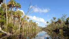 Cover for Shrinking lands: Wetland lines encroach inland as sea levels rise in Citrus