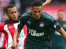 Picture for Newcastle lose Isaac Hayden for remainder of season
