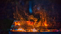 Cover for 5 Best Barbecue Restaurants in North Carolina