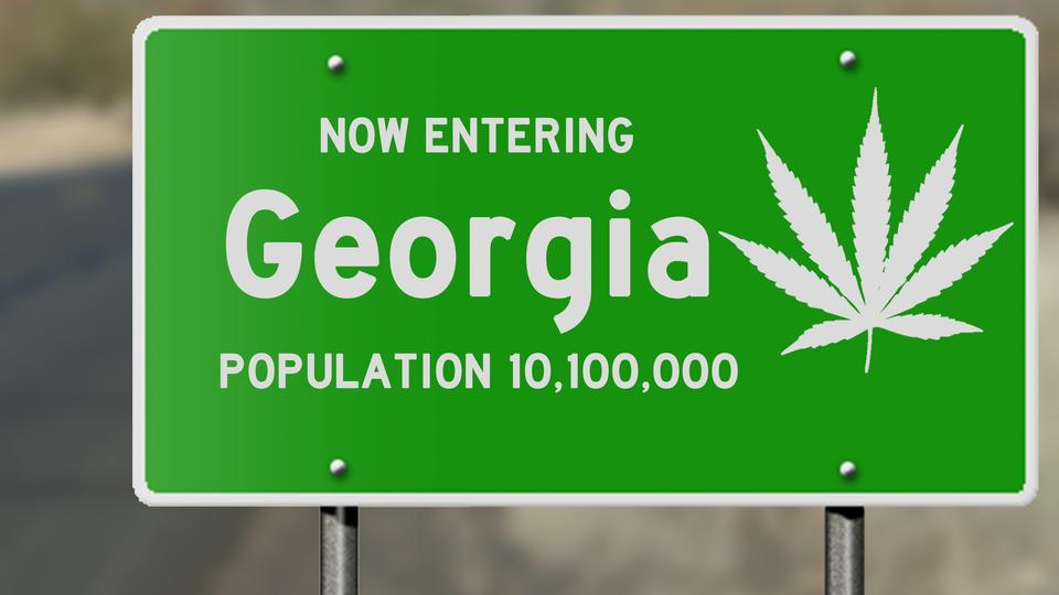 Picture for What Georgia's Senate Results Mean for Marijuana Stocks