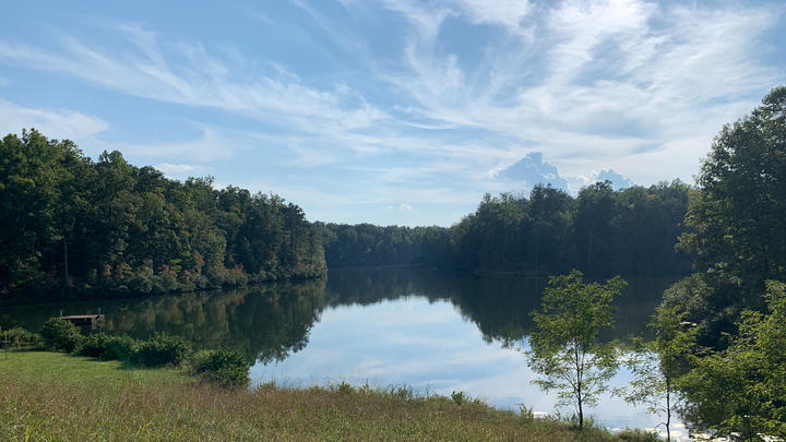 Cover for Walnut Creek Park: Natural retreat and disc golf heaven