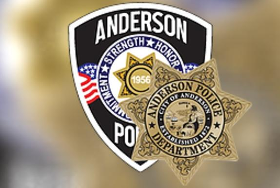 Picture for Two arrested by Anderson police during residential burglary response