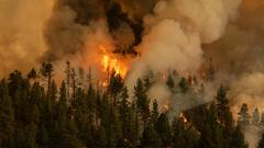 Cover for California's Dixie Fire continues to grow, destroying 16 structures; Oregon's Bootleg Fire reaches 46% containment