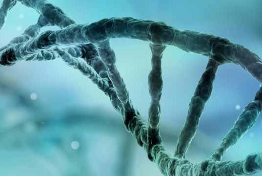 Picture for UK's Leading Role in Shaping Regulation for Genetic Technologies