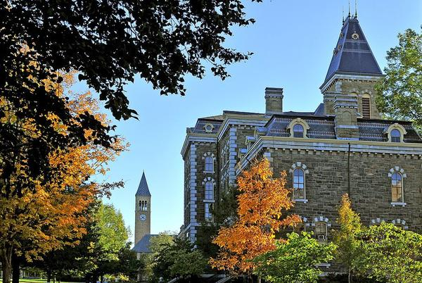 Picture for Central New York college named one of the best universities in the world