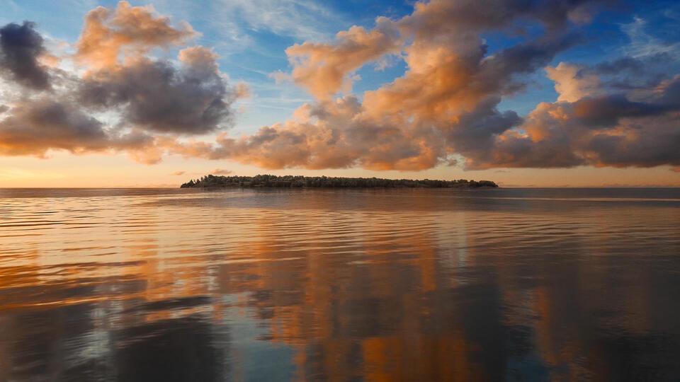 Picture for Helsinki Biennial on Vallisaari Island Explores Relationship to Nature, Time, andChange