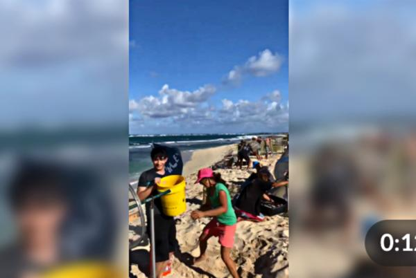Picture for Watch: A Group of Volunteers Uses the 'Sand Sifter' to Rid Hawaiian Beaches of Microplastics