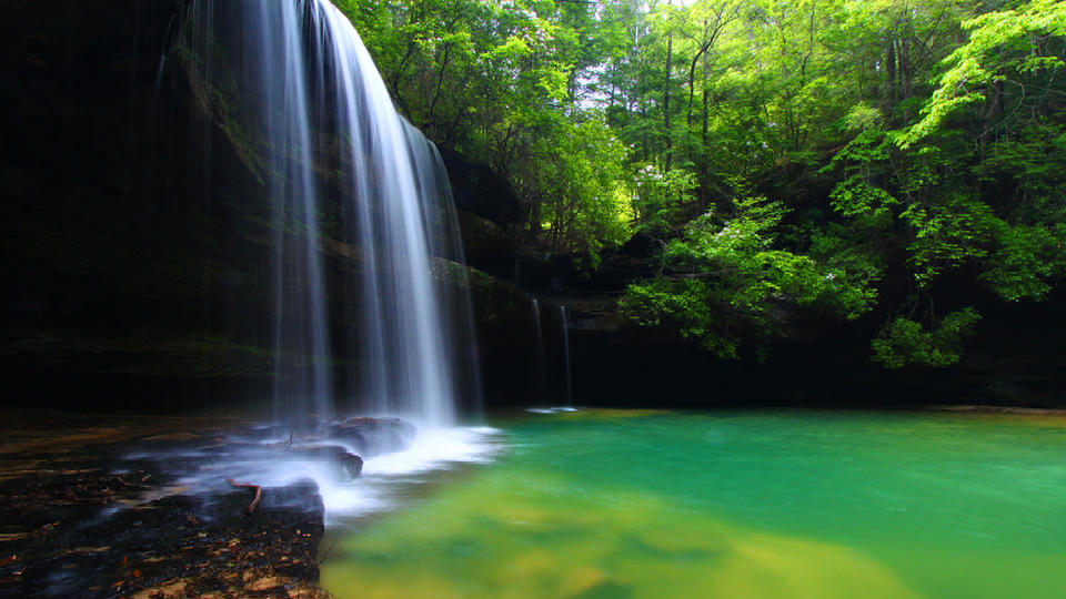 Picture for 20 eye-catching natural wonders of Alabama everyone should see at least once