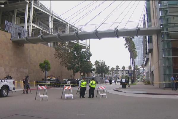 Picture for Woman and her young son die in fall from Petco Park prior to game