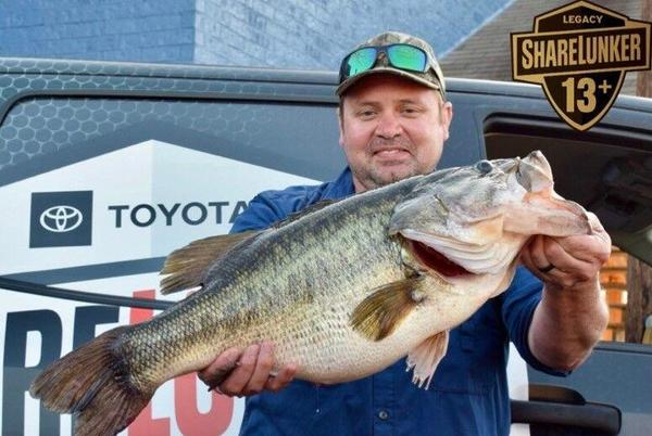 Picture for A Big Deal: Record ShareLunker Spawning Will Ultimately Benefit All Lakes
