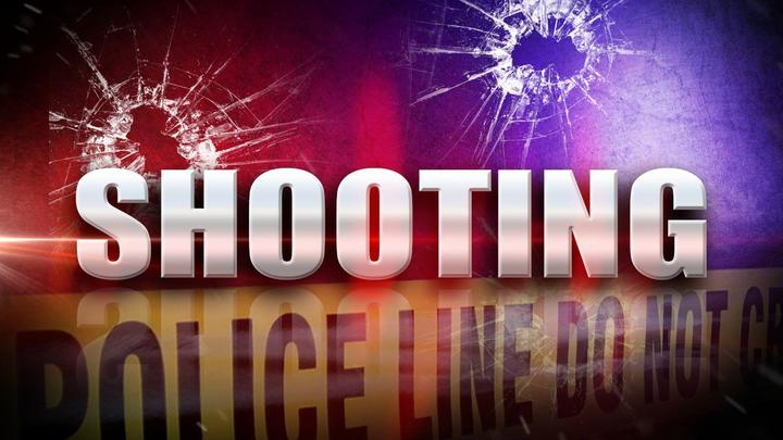 Cover for Teenaged girl charged in Great Mills Shooting