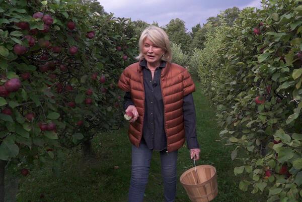 Picture for Martha Stewart's Pink-Applesauce Tart