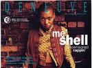 Picture for From The Soul: Meshell Ndegeocello