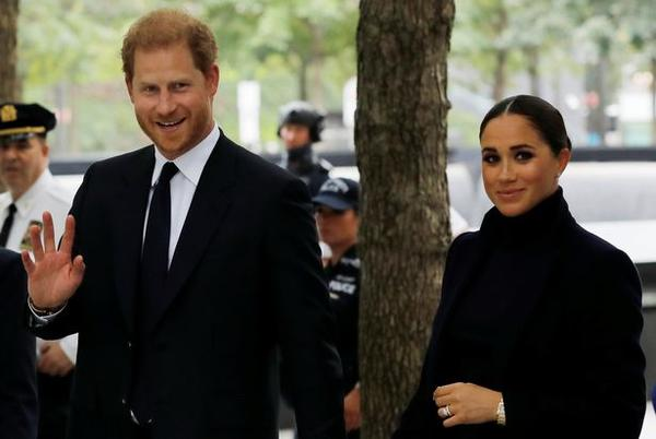 Picture for Prince Harry dealt blow as duke 'damaged goods' after 'falling from grace', expert says