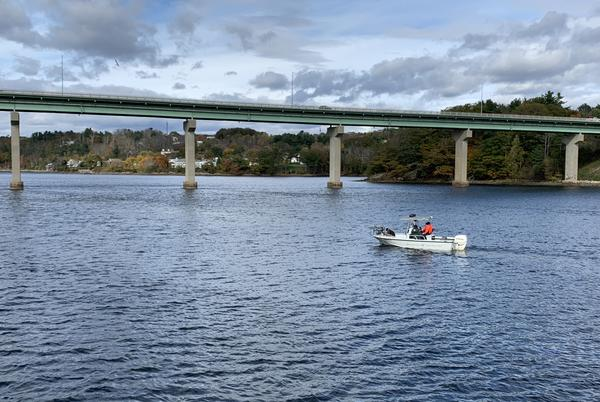 Picture for Searchers look in river for missing Belfast woman