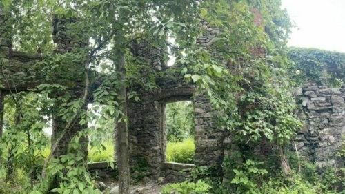 Cover for A Mysterious Woodland Trail In New Jersey Will Take You To The Original Van Slyke Castle Ruins