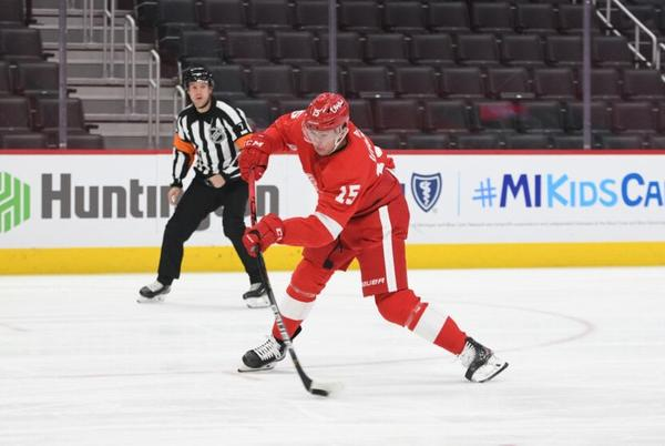 Picture for Red Wings: Vrana's Injury Puts a New Wrinkle in the Roster