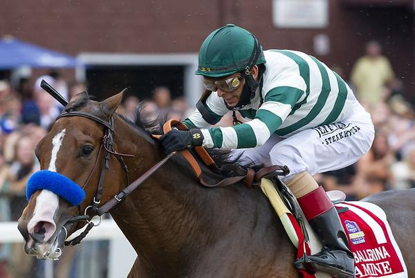 Picture for Gamine Easy Victress In Ballerina, Earns Spot In BC Filly & Mare Sprint