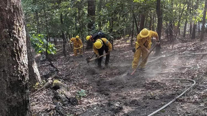 Cover for 'Human-caused' brush fire burns 5 acres in Roanoke County