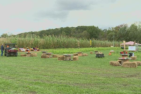Picture for A-maze-ing fall fun in Clinton County