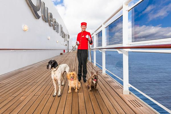 Picture for Can you cruise with your dog, cat or other pets?